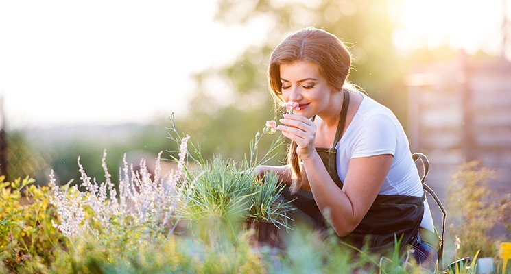 Le slow gardening… - Pour jardiner sans stresser