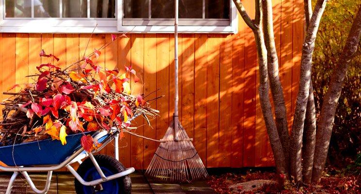 Vacances de la Toussaint : quels travaux dans ma maison ?